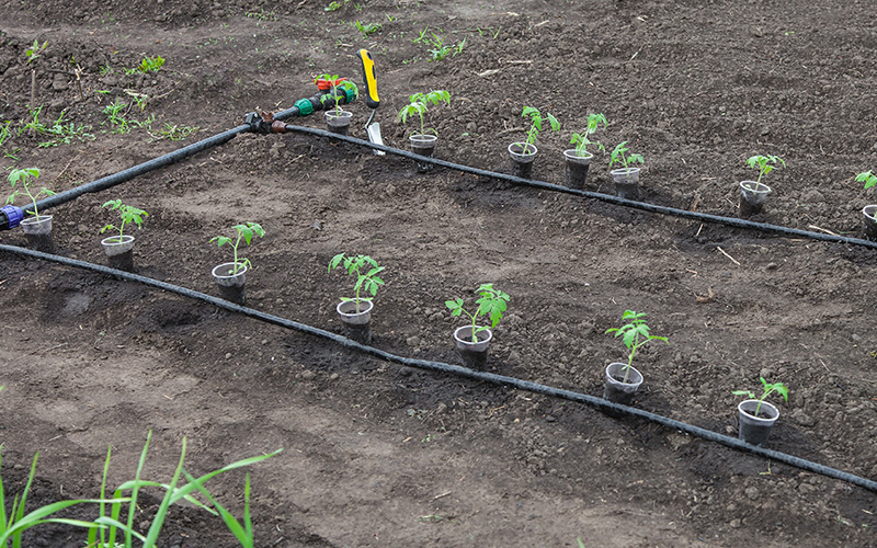 irrigation systems in Dubai